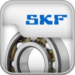 6007-2RS/3 SKF